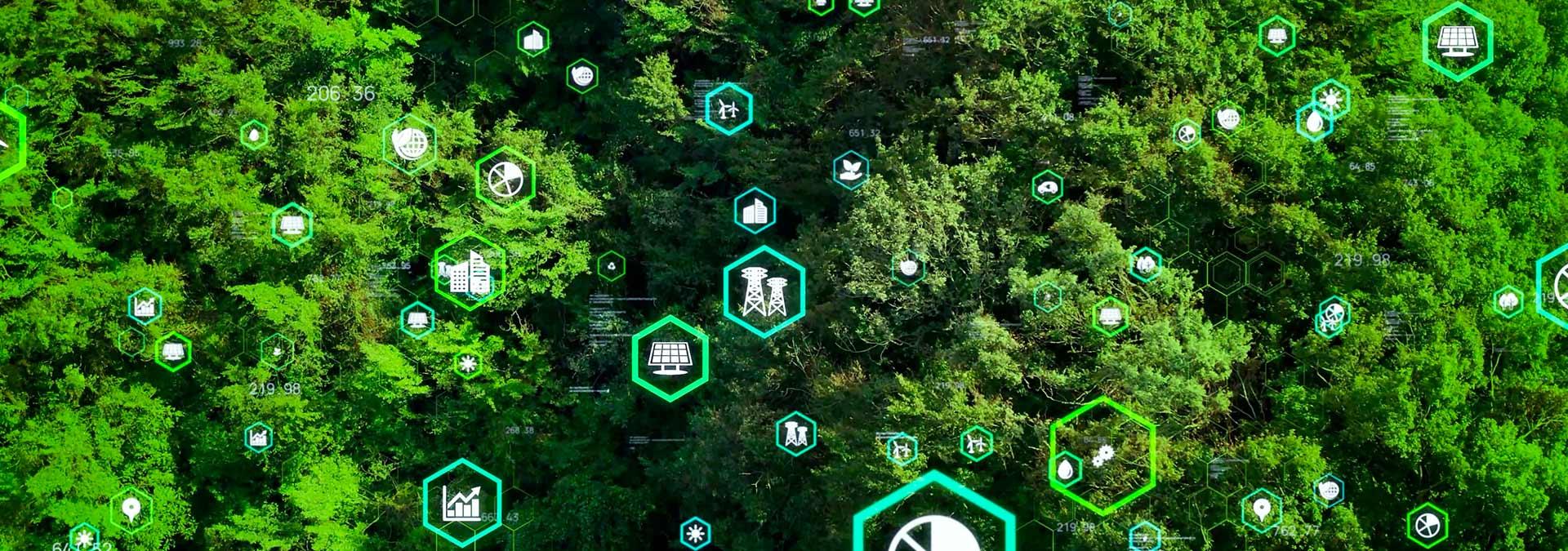 Ecology Web System